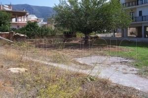 ΑΝΤΑΛΛΑΣΣΕΤΑΙ οικόπεδο στη Νεάπολη Λακωνίας με διαμέρισμα, γραφείο ή κατάστημα